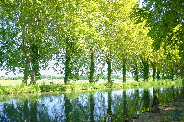 Le Chameau Bleu - Blog Voyage Canal des deux mers à Velo  - Canal des 2 mers Fourques sur Garonne