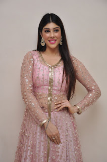 Actress Aditi Singh Latest Stills in Designer Dress at Guppedantha Prema Pressmeet 0003.jpg