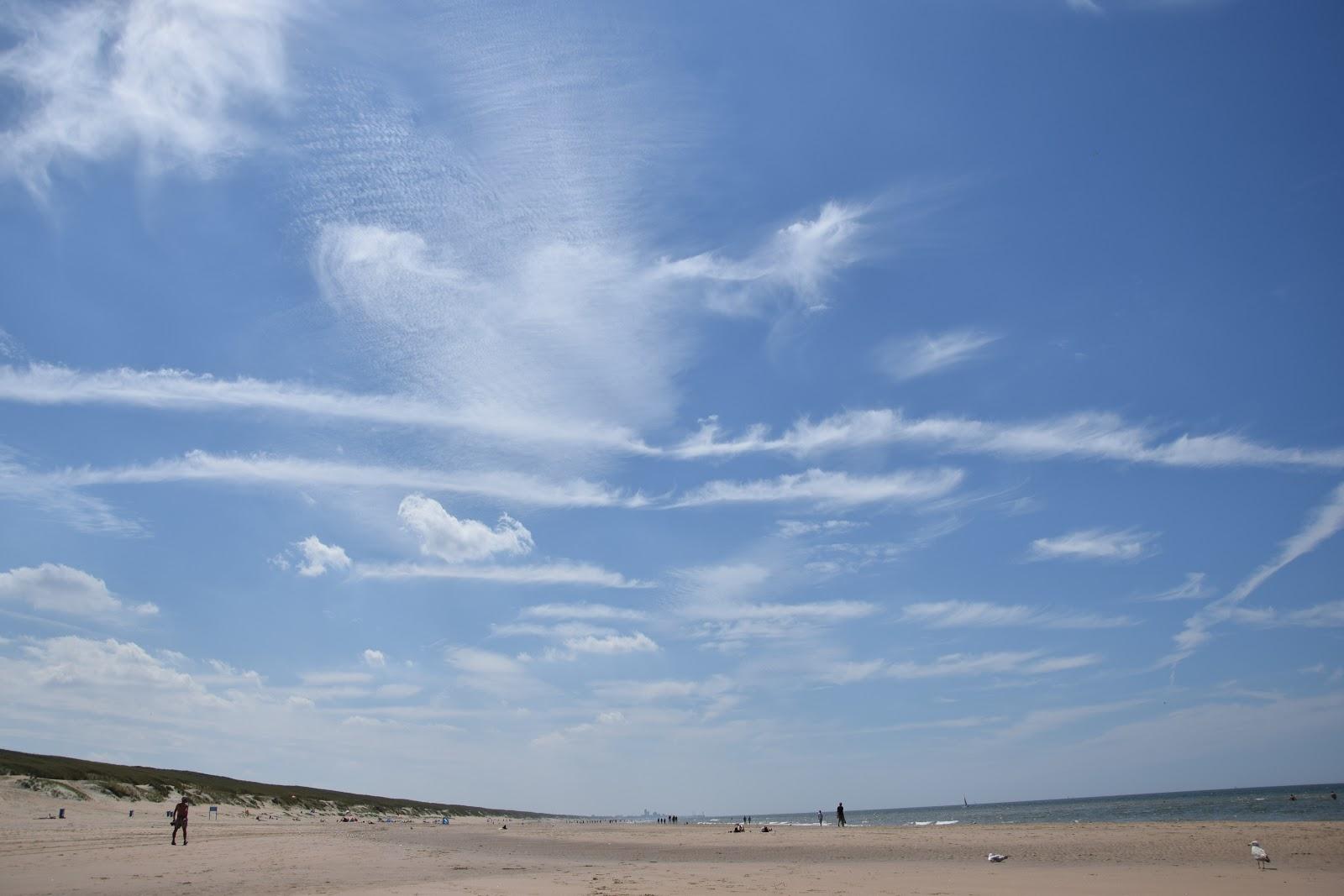 Holandia plaże