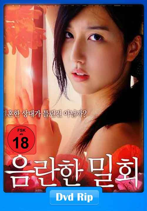 [18+] Meeting In Secret 2013 720p HDRip 600MB Poster