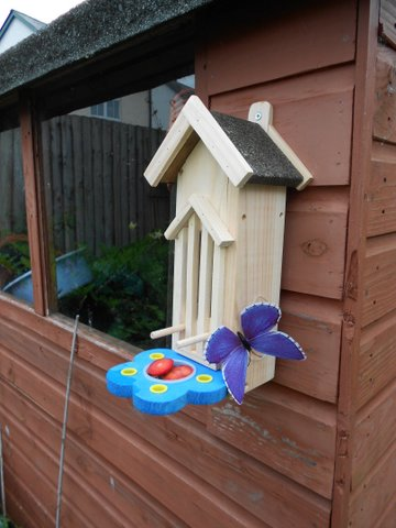 Erfly House And Feeder