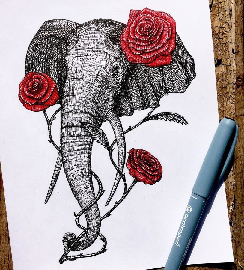 06-Elephant-Papa-Nory-www-designstack-co