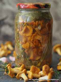 pieprzniki kiszone, grzyby kiszone, kiszonki, przetwory, pieprznik jadalny, kurka, fermentacja, sieje ferment, przetwory