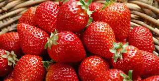 Cara Menanam Strawberry Agar Cepat Buah dan Lebat