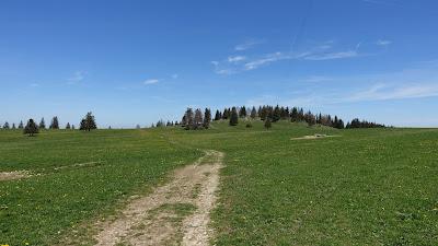 Hochebene des Mont Raimeux