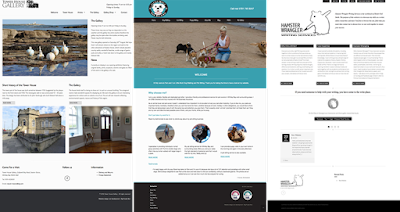 website design screens