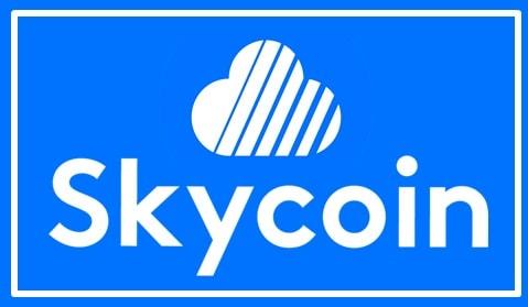 Comprar y Guardar Skycoin (SKY) Tutorial Paso a Paso Español