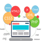 Web Development Service India