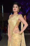 Yamini Bhaskar sizzling in saree-thumbnail-19