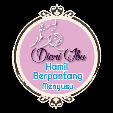 logo Diari ibu