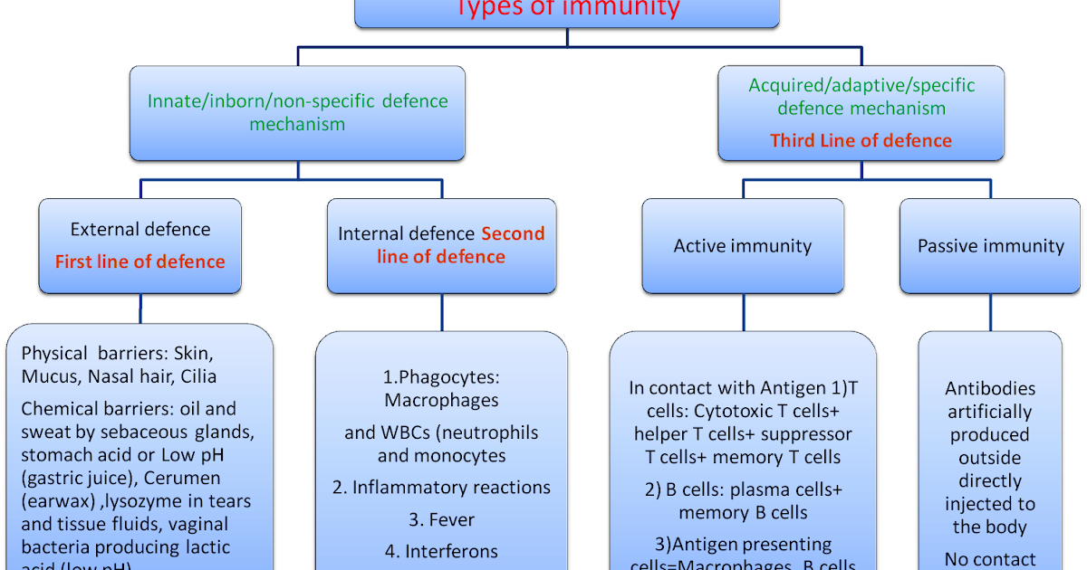 An Overview of Immune ...