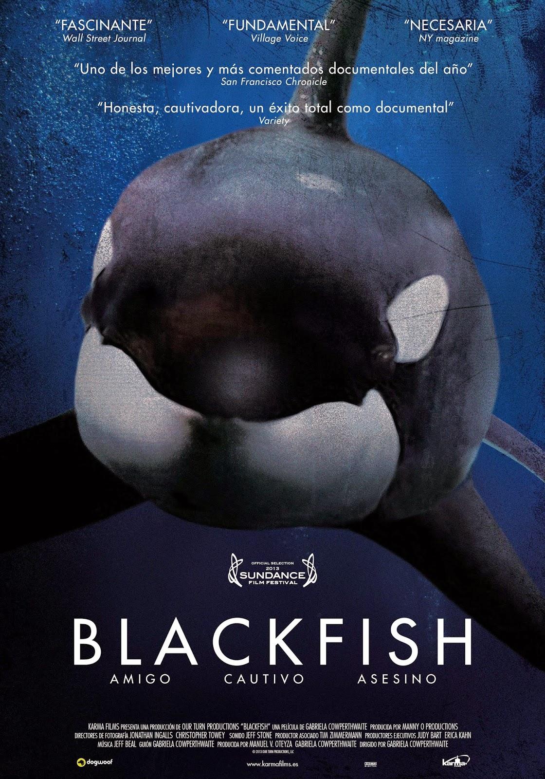 Resultado de imagen de blackfish documental