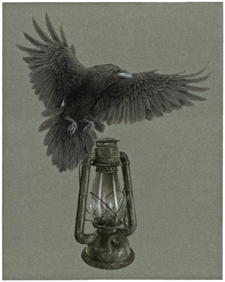 07-Oil-Lamp-Steeven-Salvat-Ink-Drawings-Birds-on-Vintage-Objects-and-Machines-www-designstack-co