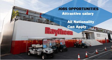Raytheon 401k investment options