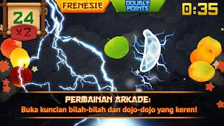 Fruit Ninja V2.3.5-2