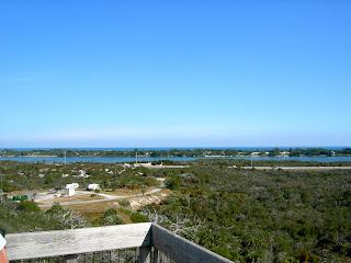 Top of Observation Tower at Jonathan Dickinson State Park Florida