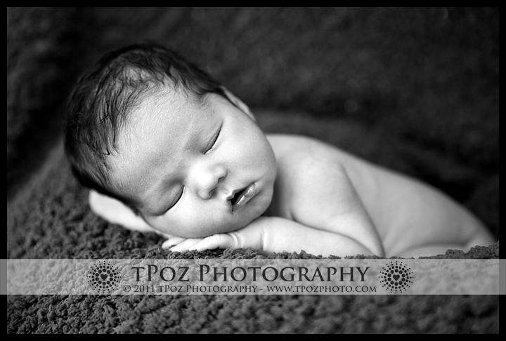 baltimore newborn baby portrait photography