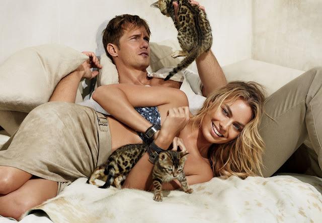 Kittens in fashion