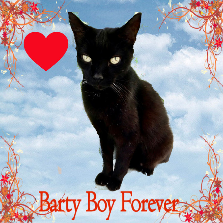 RIP Barty Boy