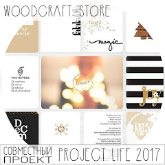 Project Life c Woodcraft-Store
