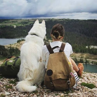 No te enamores de una mujer que ama a los perros
