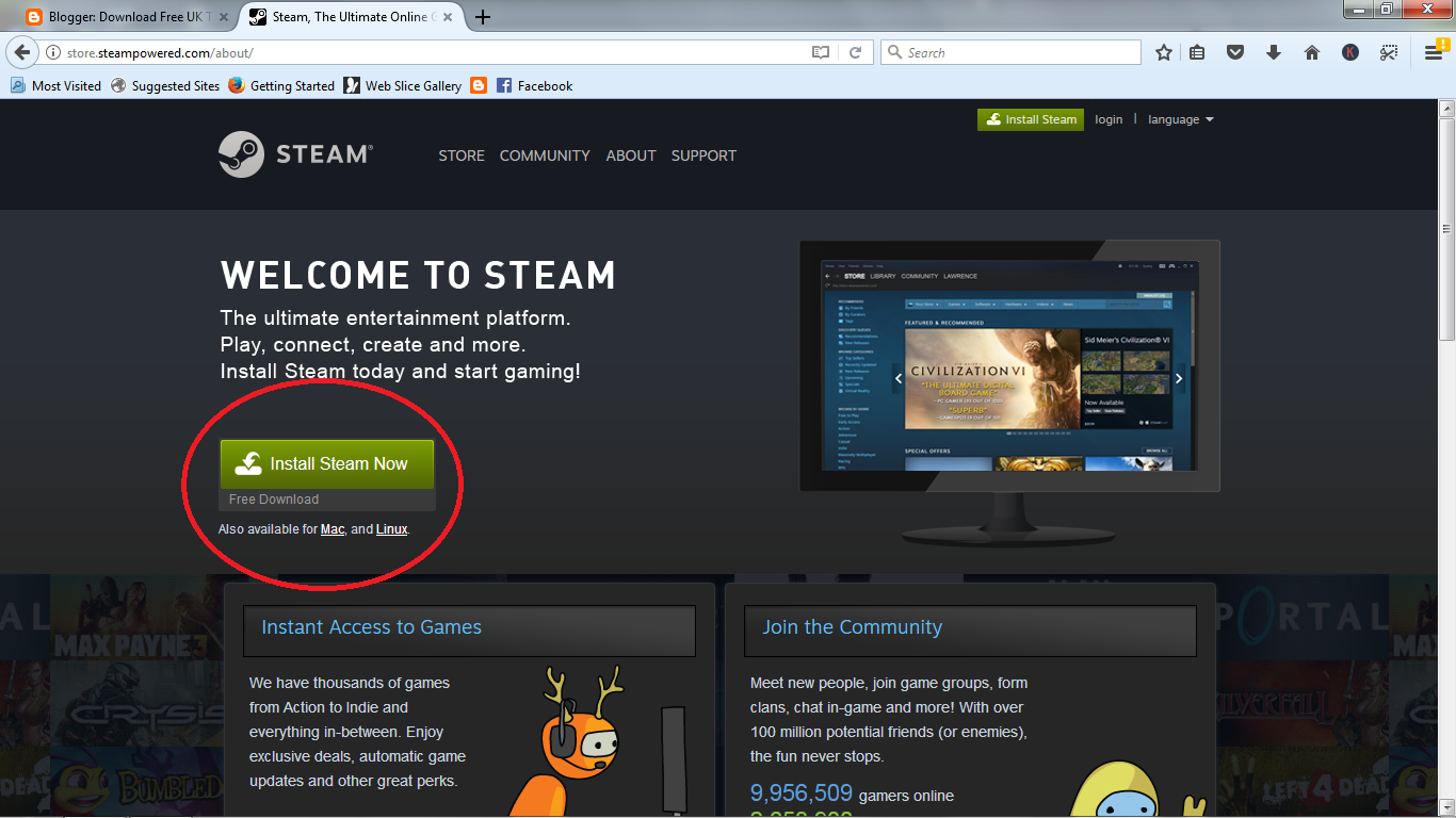 Steam init file