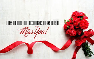 i miss you than the sun misses the sky at night miss you quote with red flowers