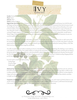 Magical and Medicinal Uses of Ivy