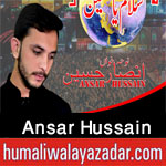 http://www.humaliwalayazadar.com/2017/09/ansar-hussain-nohay-2018.html