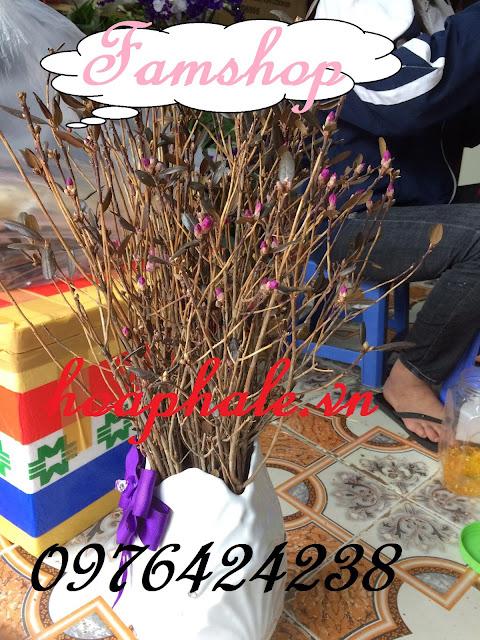 Cua hang hoa do quyen ngu dong tai Thanh Tri