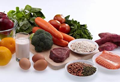 Makanan Yang Kaya Protein Untuk Pembentukan Sel Manusia
