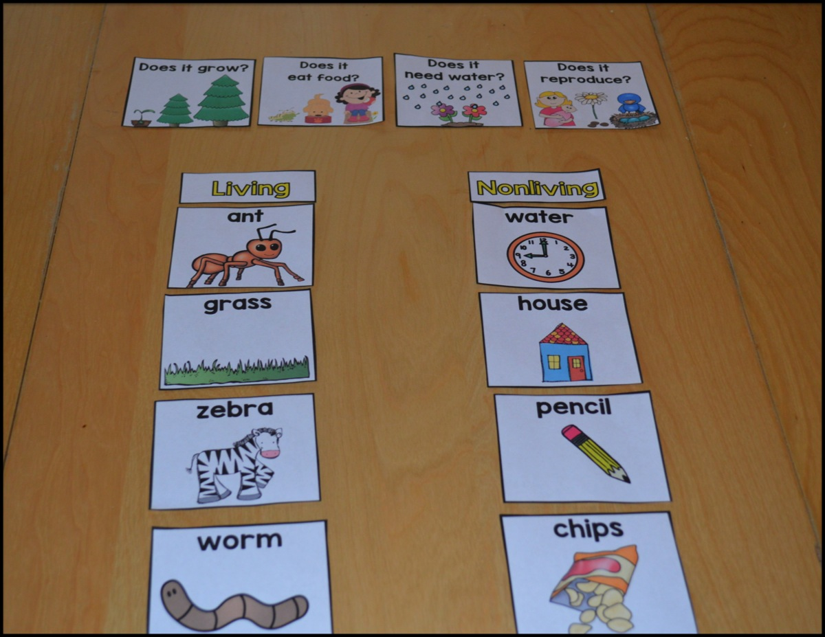 Sarah S First Grade Snippets Living And Nonliving Update
