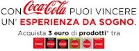 Logo Con Coca-Cola e Carrefour vinci un viaggio da sogno