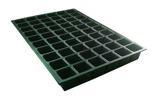 60 cell square seed tray ahmedabad gujarat