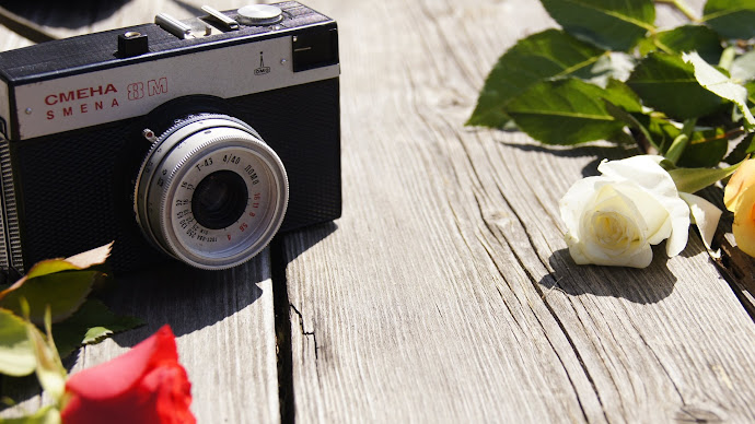 Wallpaper: Old Camera and Roses