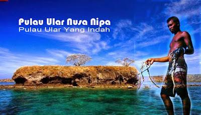 Wisata Ekstrim Ke Pulau Ular Nusa Nipa Di Bima  WISATA EKSTRIM KE PULAU ULAR NUSA NIPA DI BIMA