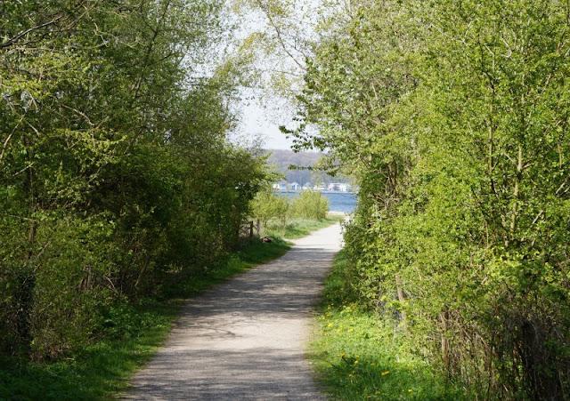 Der Hasselfelder Strand: Unser neuer Lieblingsstrand an der Kieler Förde. Auf Küstenkidsunterwegs inklusive Anfahrt - so findet Ihr ihn.
