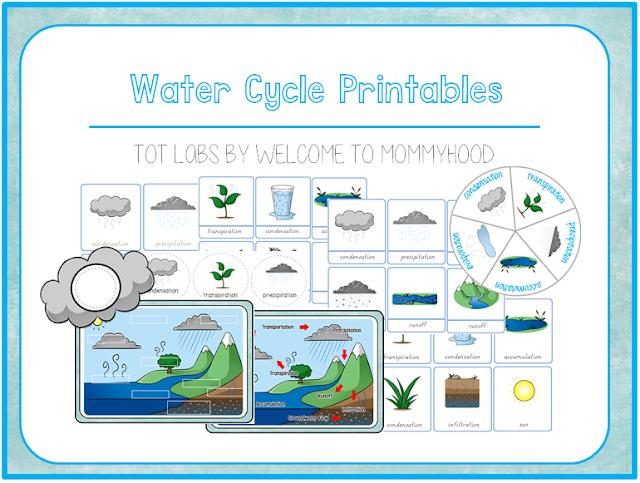 Water cycle printables from Welcome to Mommyhood #scienceactivities, #montessoriactivities, #montessori, #preschoolactivities, #preschool,