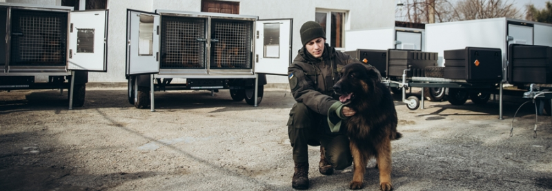 Нацгвардія придбала спецтранспорт для службових собак
