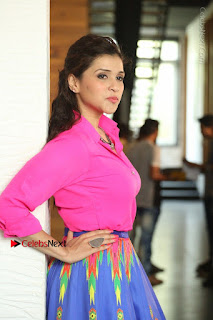Actress Mannar Chopra in Pink Top and Blue Skirt at Rogue movie Interview  0140.JPG