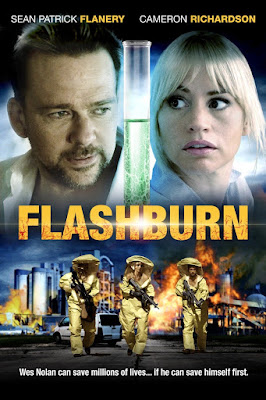 Flashburn 2017 Custom HDRip NTSC Sub