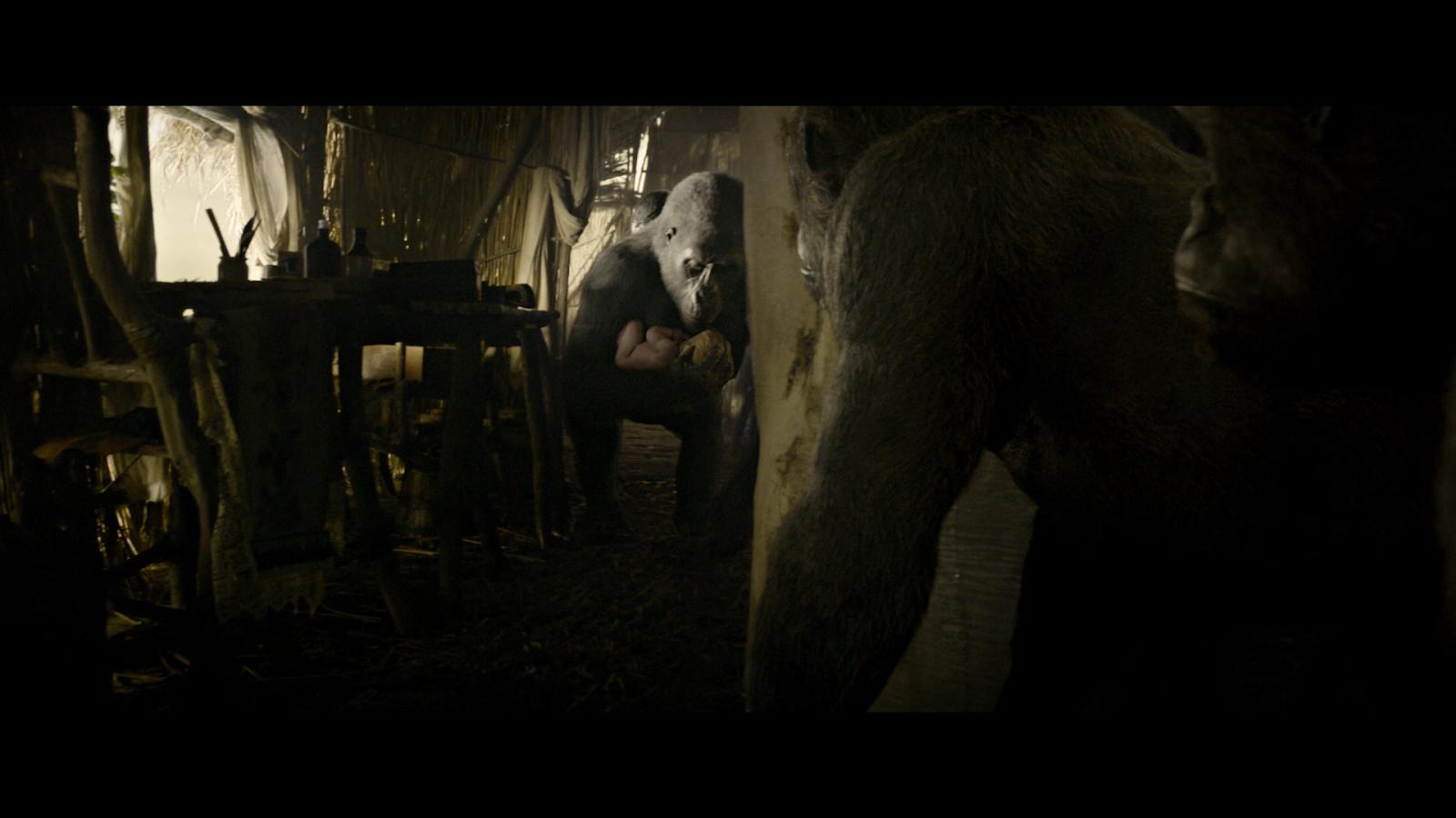 La Leyenda De Tarzan (2016) 1080p BD25 2