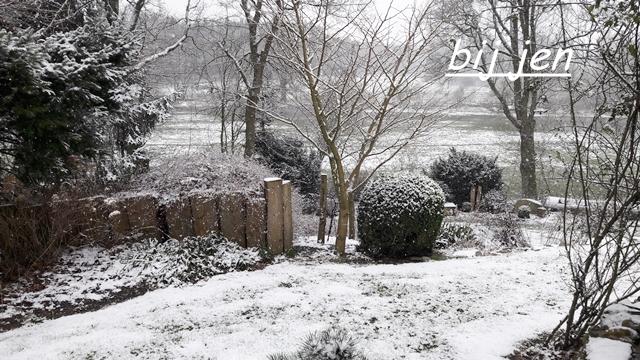 Garten, Schnee, snow, sneeuw