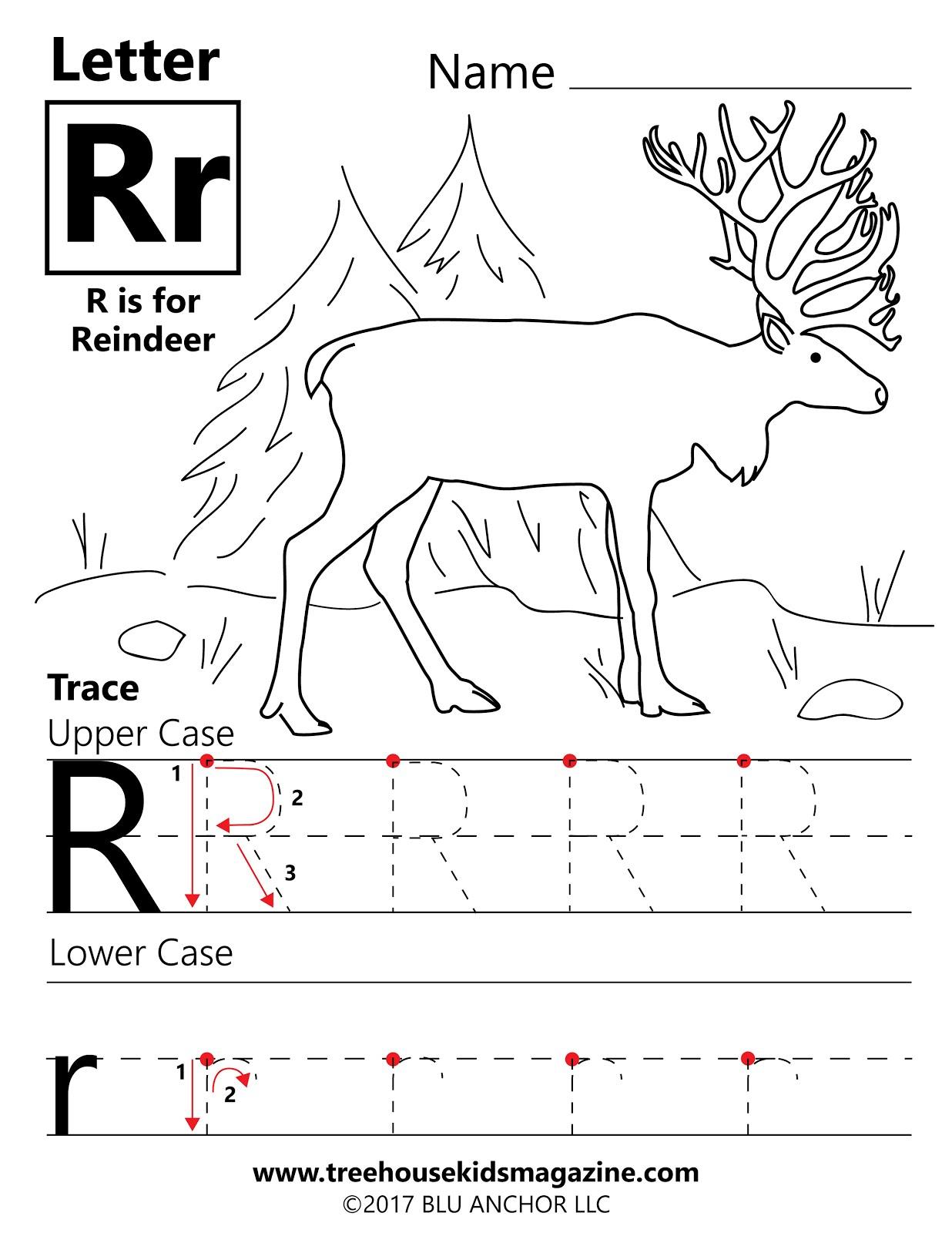 Treehouse Magazine Reindeer Adventure