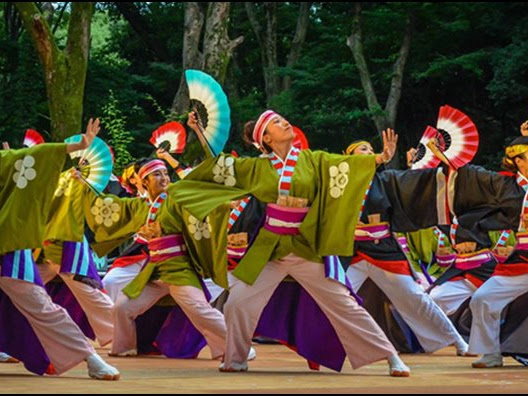 Halal Travel Tour ke Jepang? Royal Indonesia Pilihan Tepat
