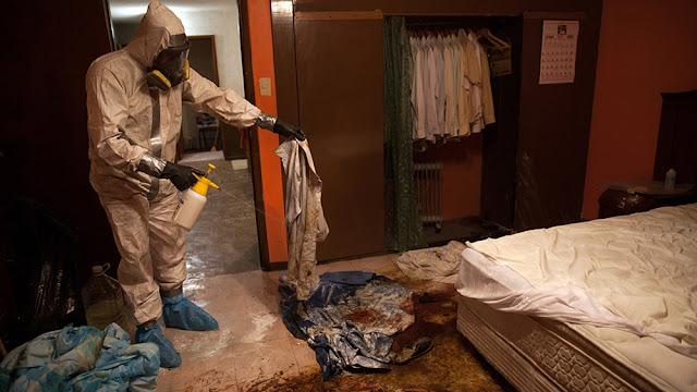 desinfección plagas viviendas sevilla