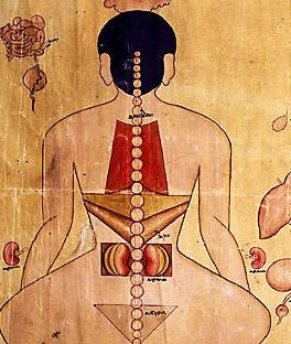 Tibetan moxa
