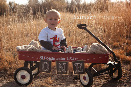 Saunders Photography- One Year/ Family Photo Shoot