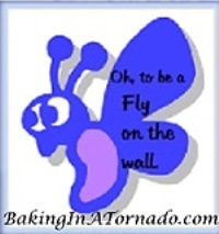 Fly on the Wall| www.BakingInATornado.com | #MyGraphics