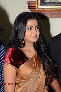 Actress Anupama Parameswaran Stills in Silk Saree with Shatamanam Bhavati Team at Sandhya Theater  0004.JPG
